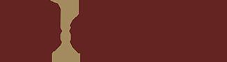 dmd-logo-boja